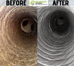 Houston ac mold cleaning