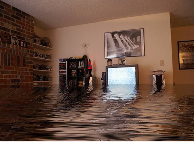 Water damage restoration and repair